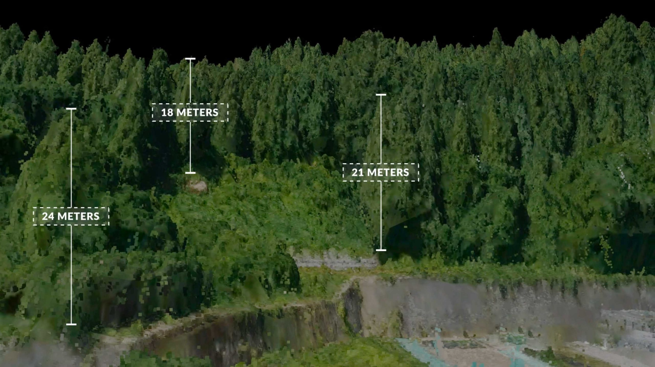 3d-point-cloud-forest-tree-measurments